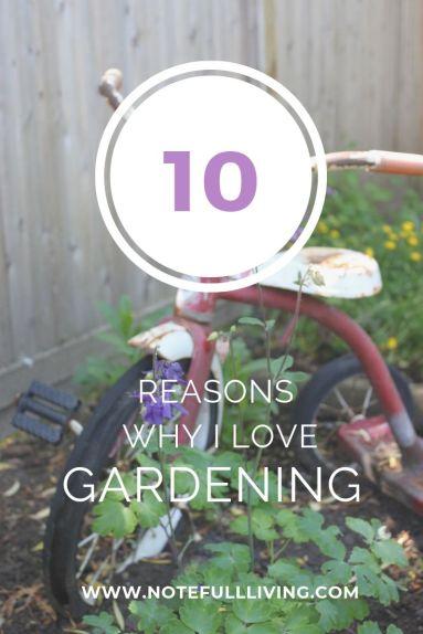 10 REASONS I LOVE GARDENING
